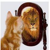 image mesure estime de soi